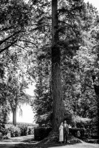 photographe-mariage-bordeaux-sebastien-huruguen-maries-chateau-lagrange-medoc-gigantesque-arbre