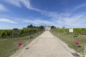 mariage-clermont-de-beauregard-chateau-monbazillac-sebastien-huruguen-photographe-mariage-bordeaux-les-mariages-de-mademoiselle-L-41